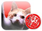 【サルでき公認アプリ】NekoLogy:000 リリース!