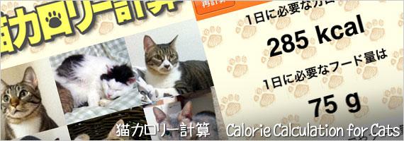 猫カロリー計算